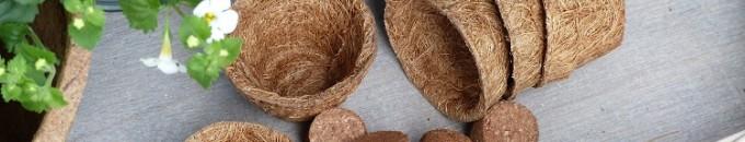 Kokosfaser Anzuchttöpfe