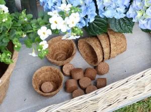 Anzuchttopf 0,05 L und torffreien Quelltabs aus Kokosfasern