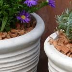 Kokos Mulch - Winterschutz für Pflanzkübel