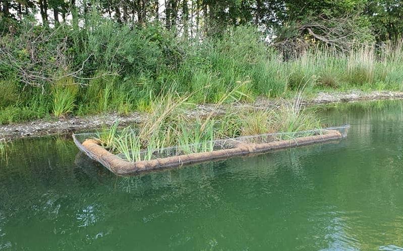 Fertig bepflanztes schwimmendes Biotop